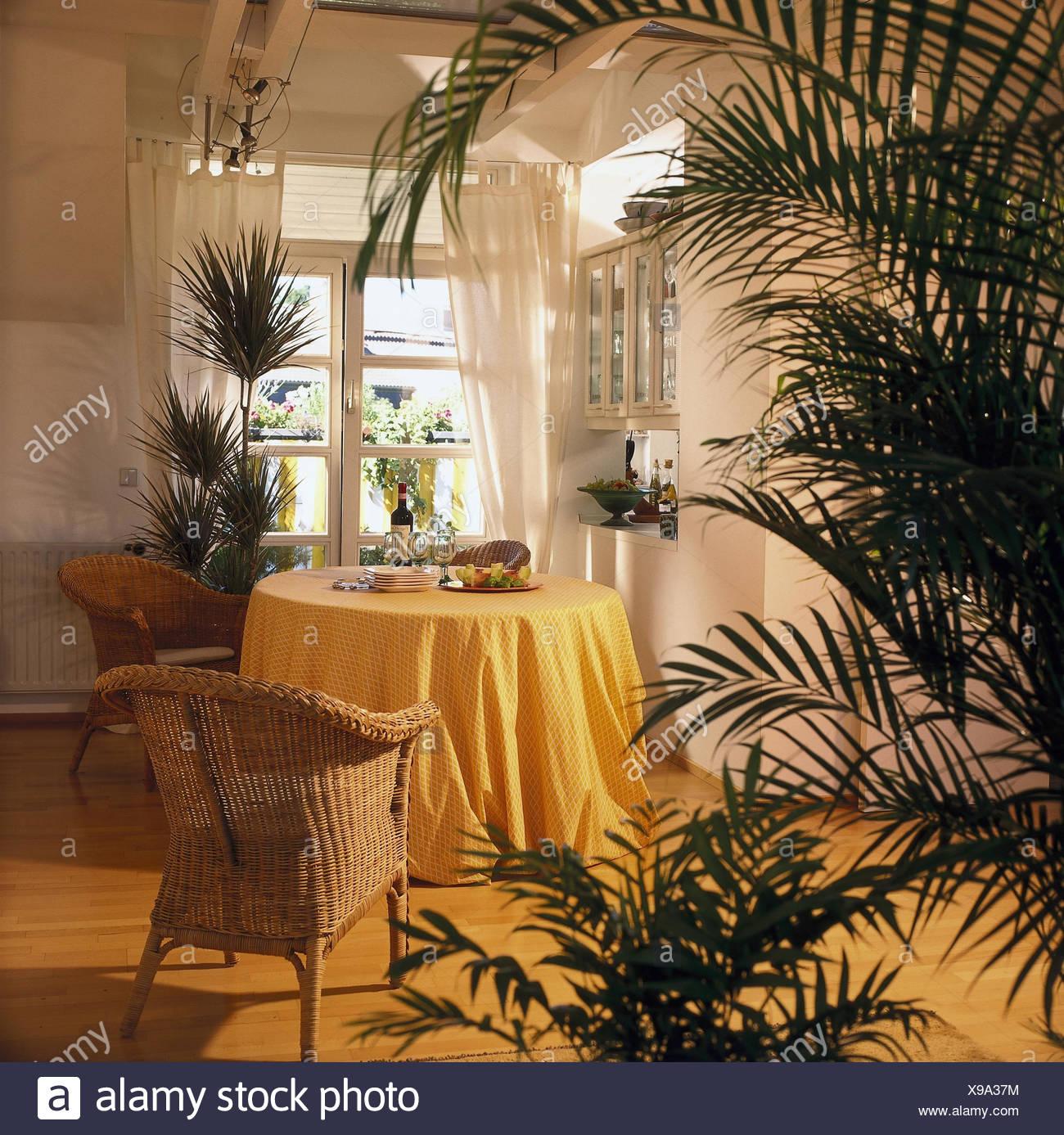 Poltrone In Vimini Da Interno loft, spazio soggiorno, sala da pranzo, piatta, all'interno