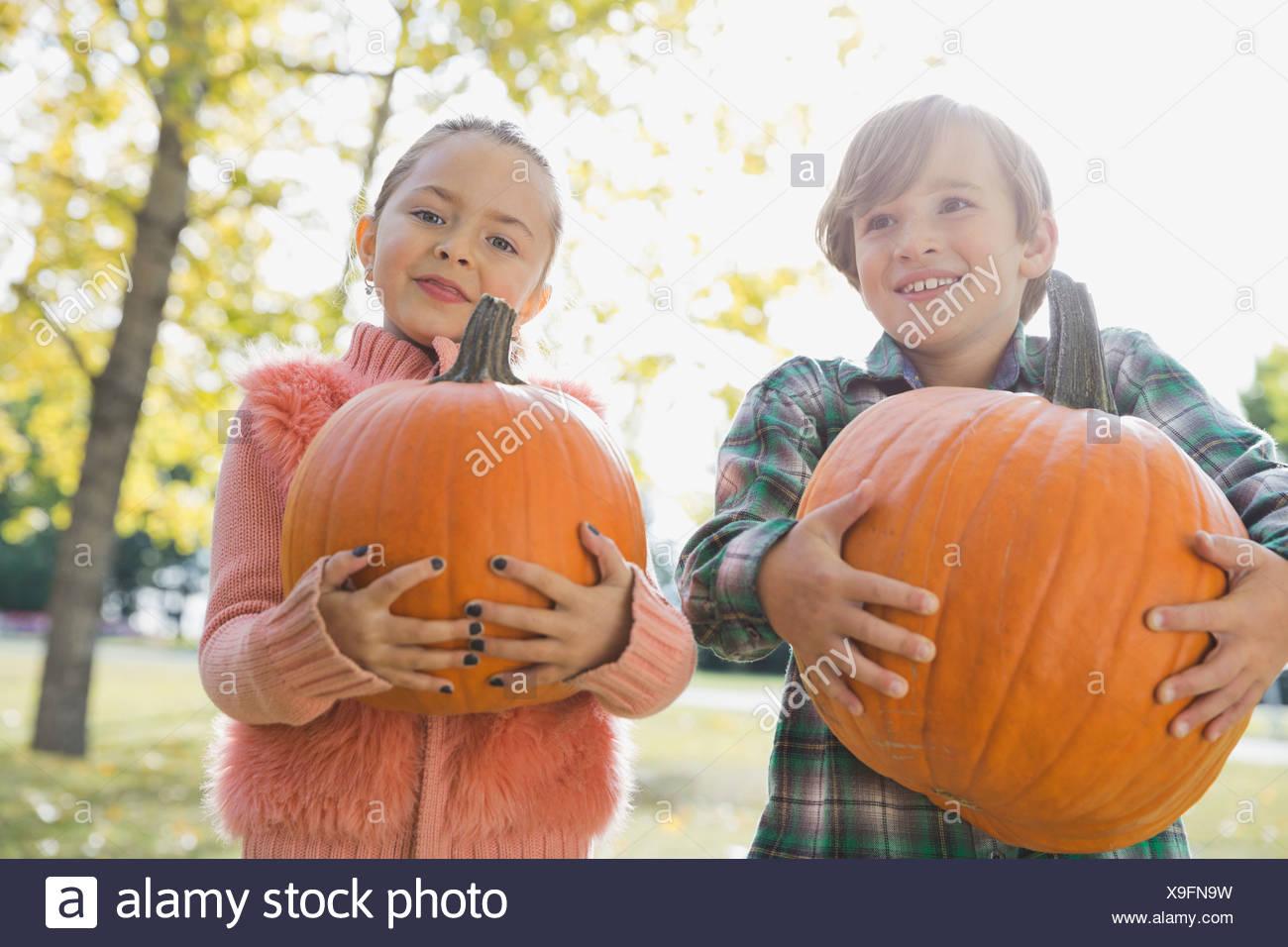 I bambini che trasportano le zucche Immagini Stock