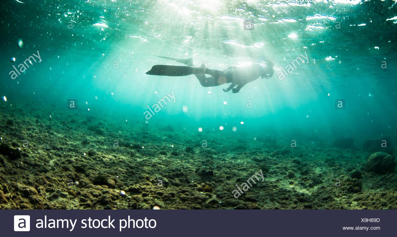 Persona lo snorkeling in oceano, Okinawa, in Giappone Immagini Stock