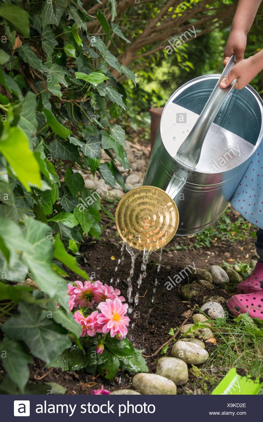 Ragazza giardinaggio, fiori di irrigazione nel letto di fiori Immagini Stock