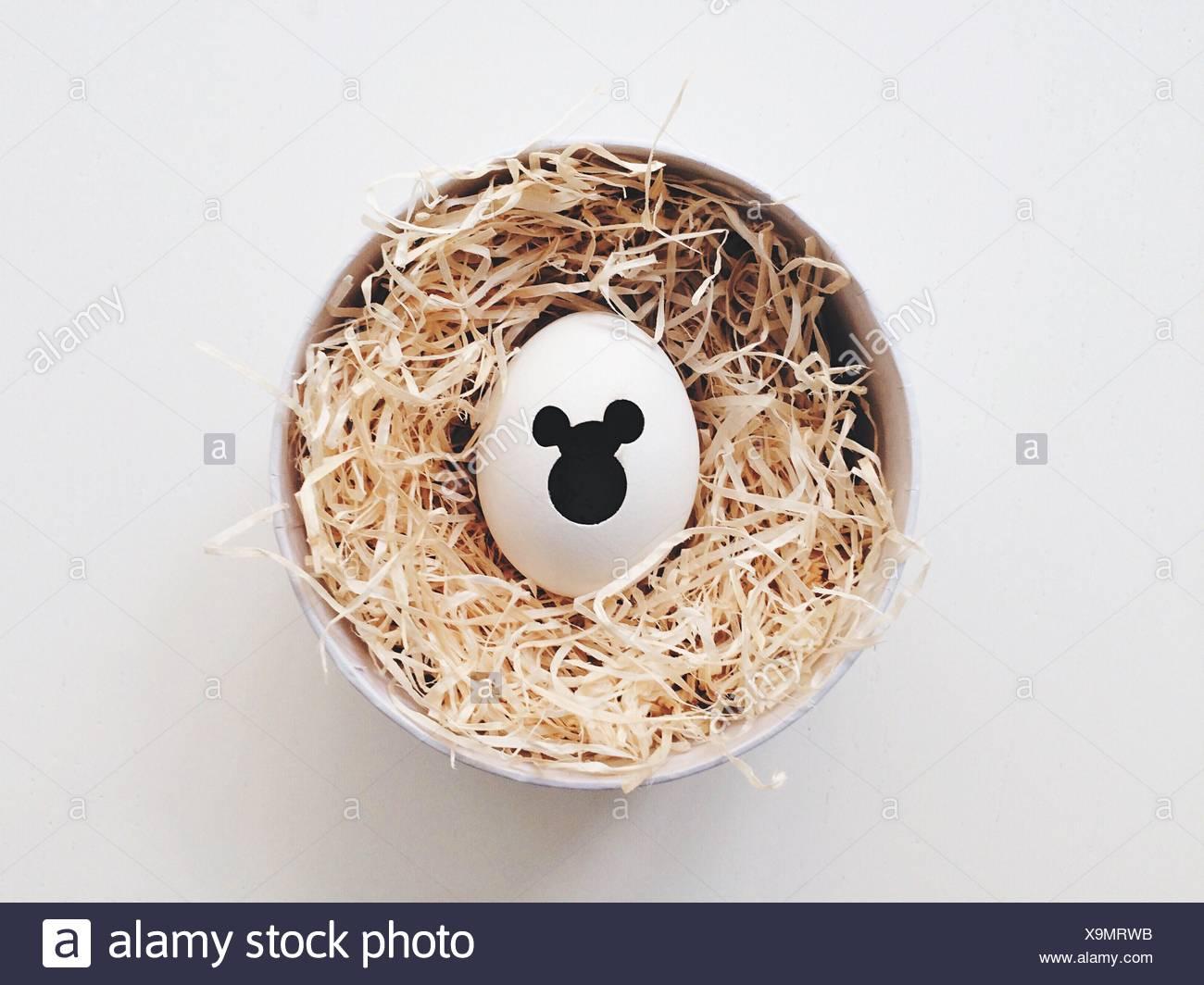 Guscio d'uovo con forme rotonde Foto Stock