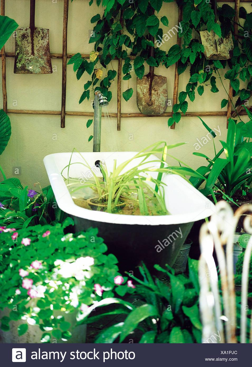 Docce Per Esterni E Giardini ghisa bianca in bagno nel giardino pieno di piante e un