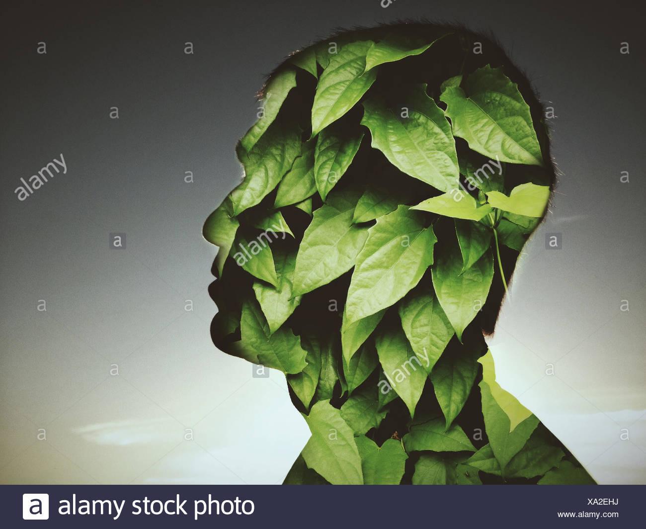 Lascia il profilo di copertura dell'uomo Immagini Stock