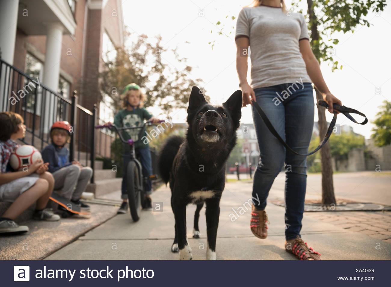 Donna che cammina cane al guinzaglio passato i ragazzi sul marciapiede Immagini Stock