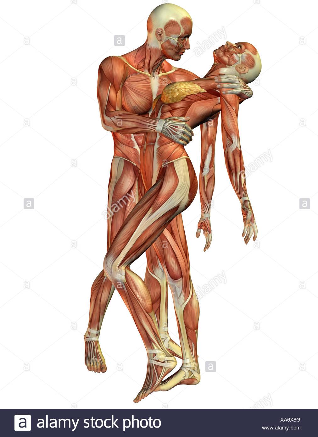 Erfreut Scm Muskel Fotos - Menschliche Anatomie Bilder ...
