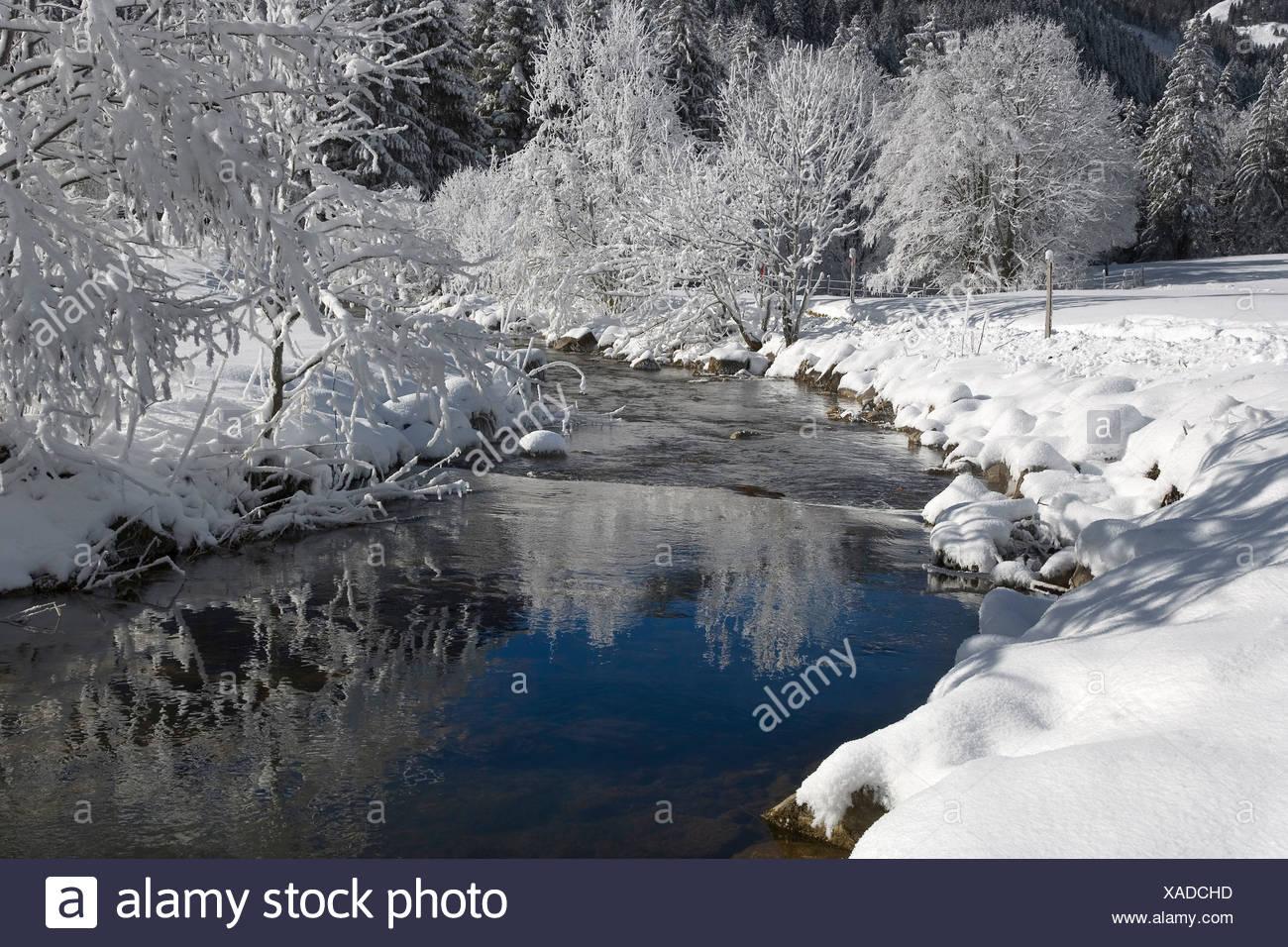 Warme senso River, Schwarzsee Prealpi, Kaiseregg, Cantone di Friburgo, Svizzera Immagini Stock