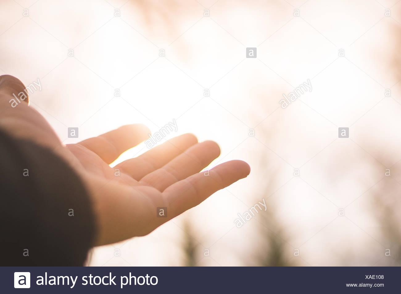 Persona mano nella parte anteriore della luce solare Immagini Stock