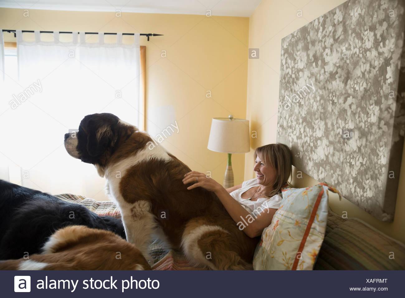 Donna e san Bernardo cane nel letto Immagini Stock