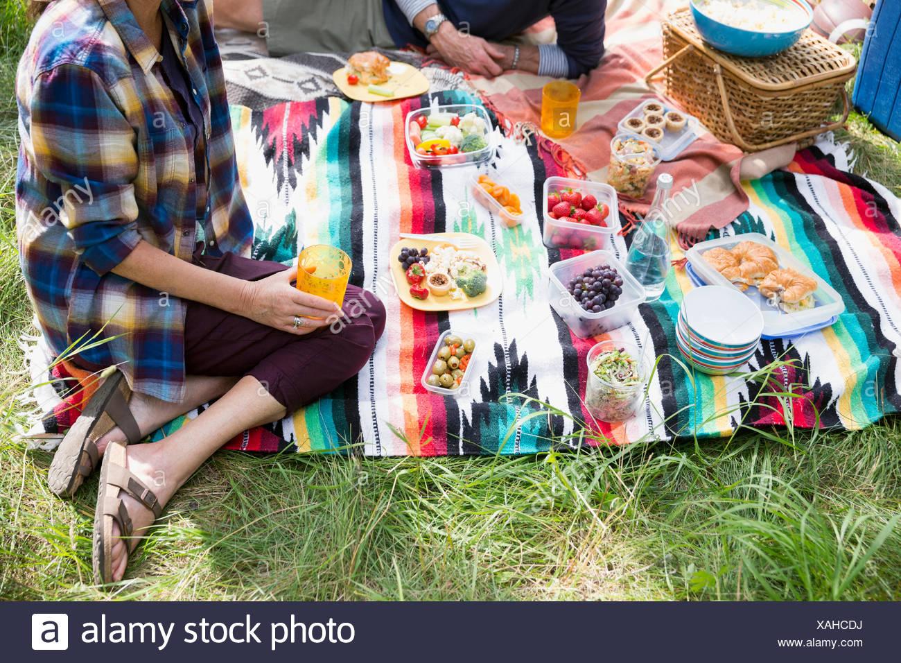 Giovane godendo picnic sulla coperta Immagini Stock