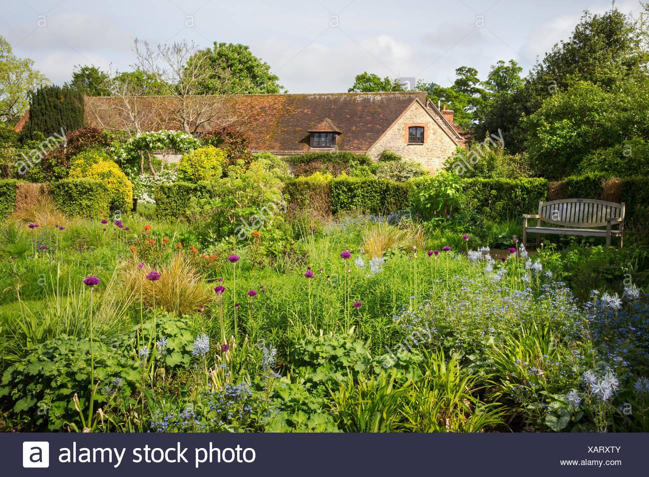 Coppia di arbusti e piante in fiore di un confine. Alberi. Foto Stock