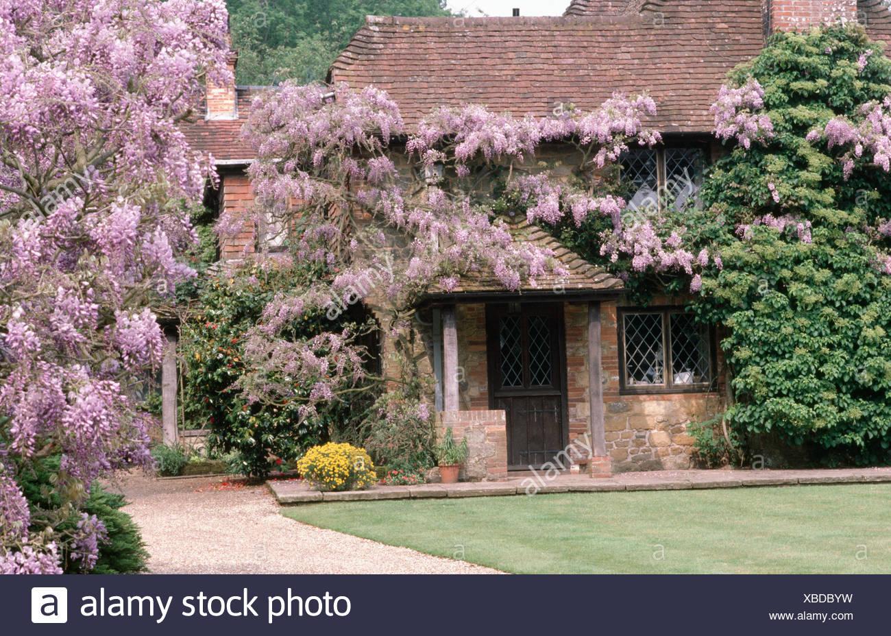 Esterno Casa Di Campagna esterno della casa di campagna con profusamente fioritura
