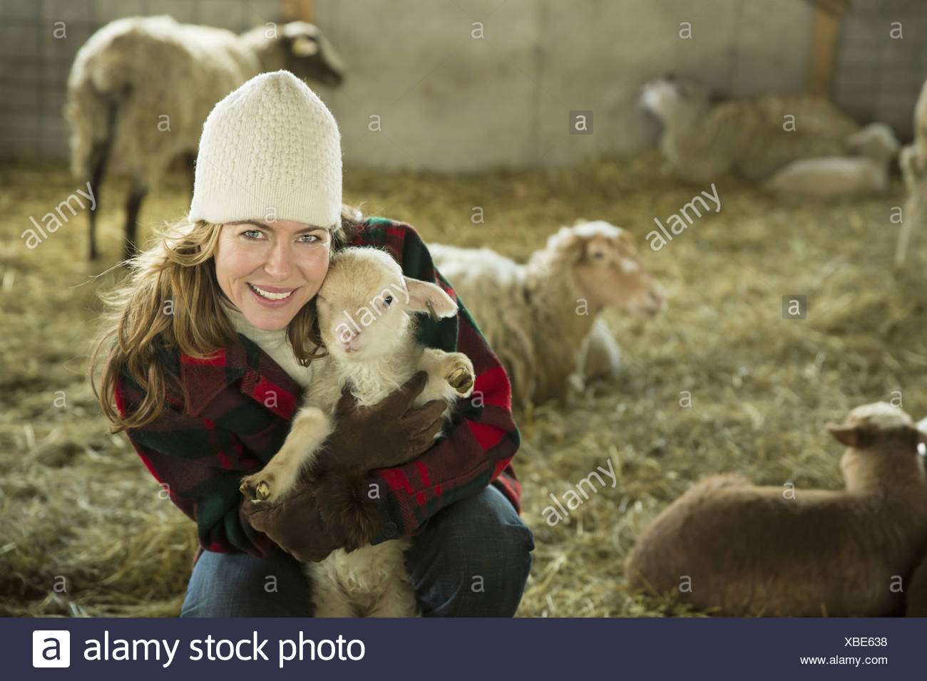 Un agriturismo biologico in inverno in Cold Spring nello Stato di New York una famiglia lavorando la cura per il bestiame di una donna che tiene una piccola agnello Immagini Stock