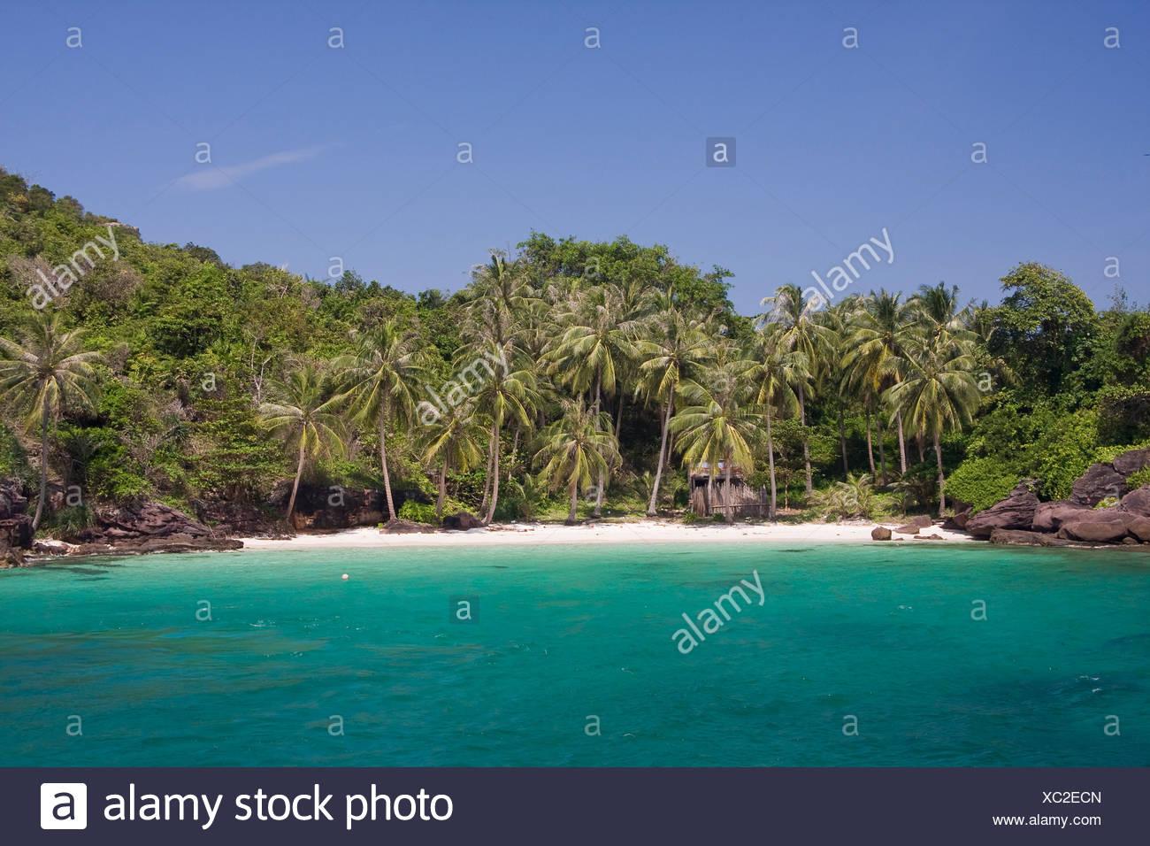 Atmosfera ambiente sogno spiaggia da sogno paradiso di vacanza isola come outdoor lungo palm Phu Quoc mare di sabbia Asia Vietnam Immagini Stock