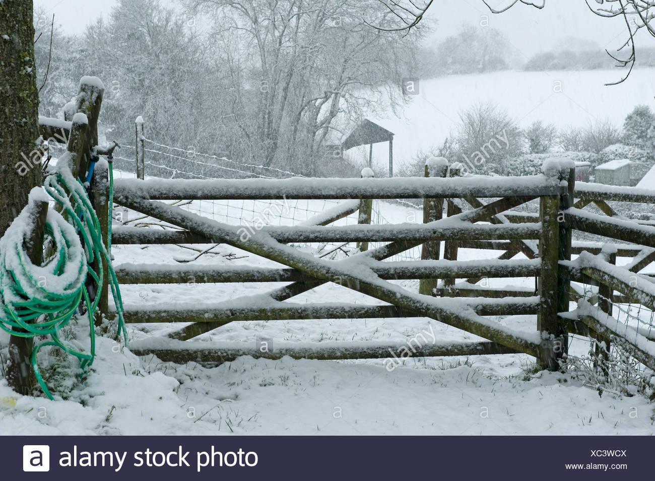 Campo di gate e di un tubo flessibile per la fornitura di acqua per il bestiame in una forte tempesta di neve, Devon, Immagini Stock