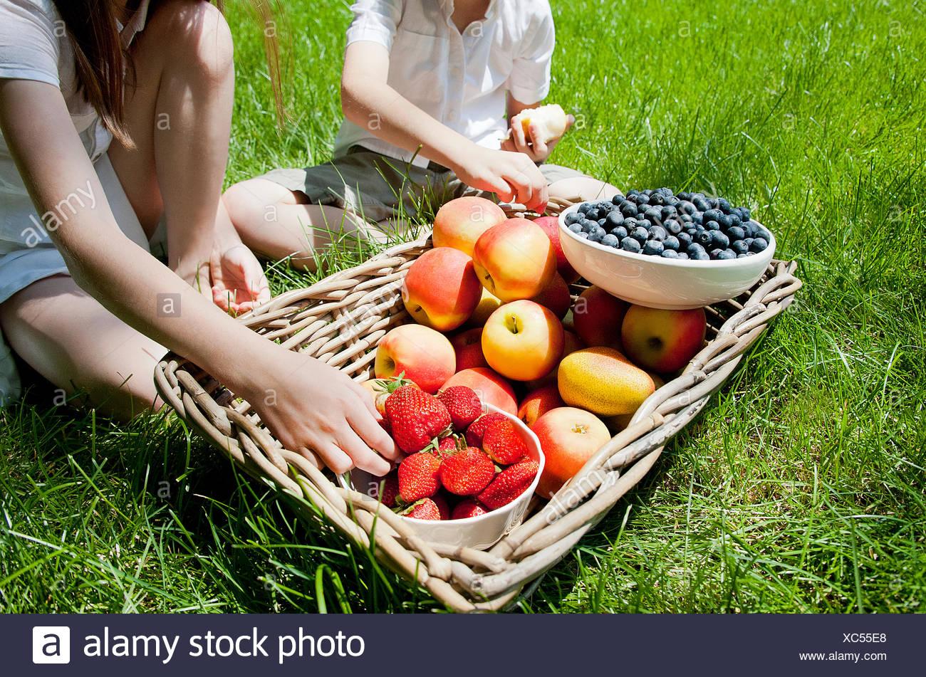 Vista ritagliata di fratelli e sorelle di mangiare la frutta dal cesto su erba Immagini Stock
