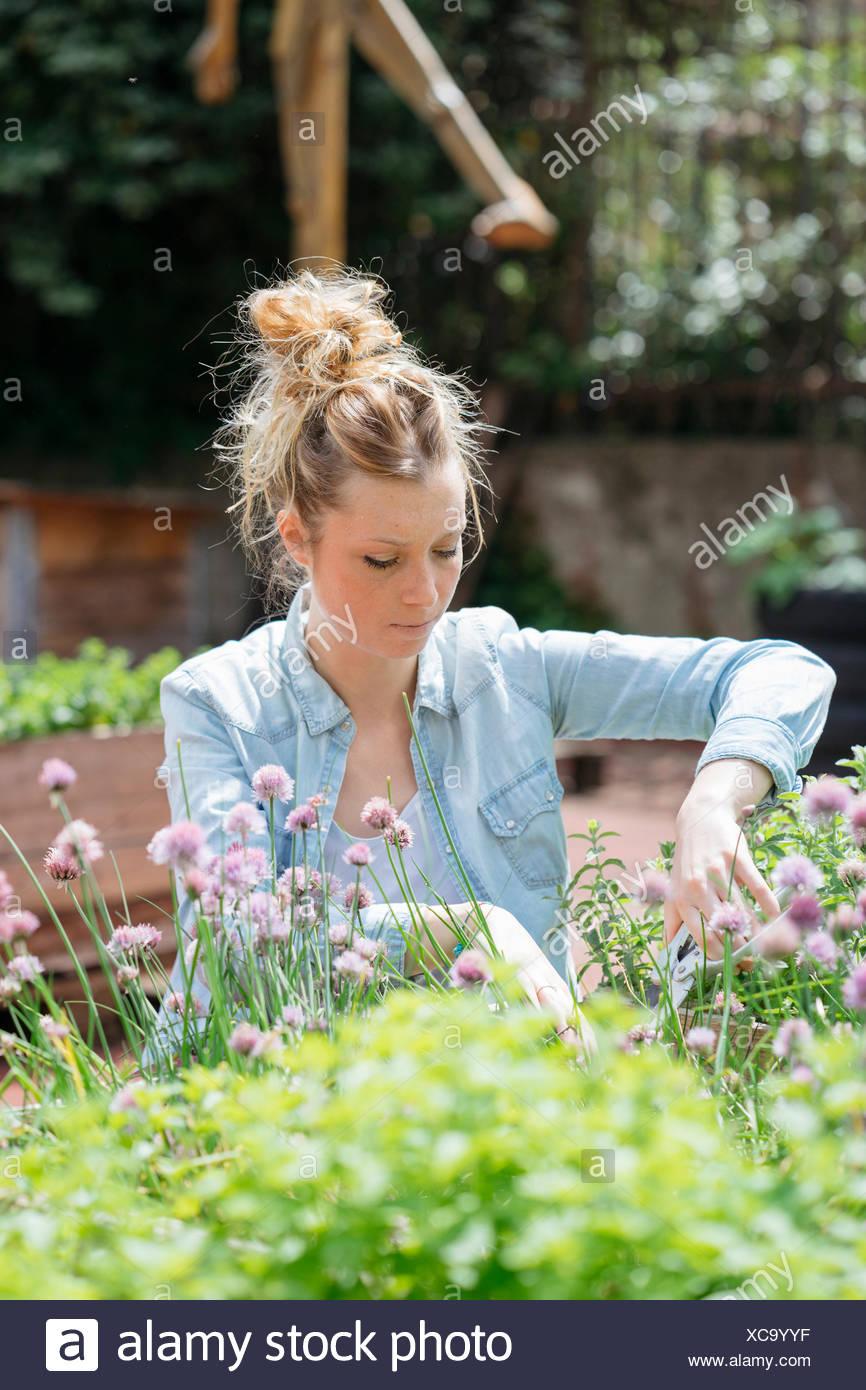 Donna di giardinaggio Immagini Stock