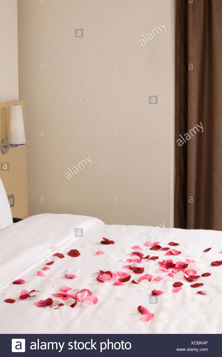 Camera con letto grande e fiori di colore rosso Immagini Stock