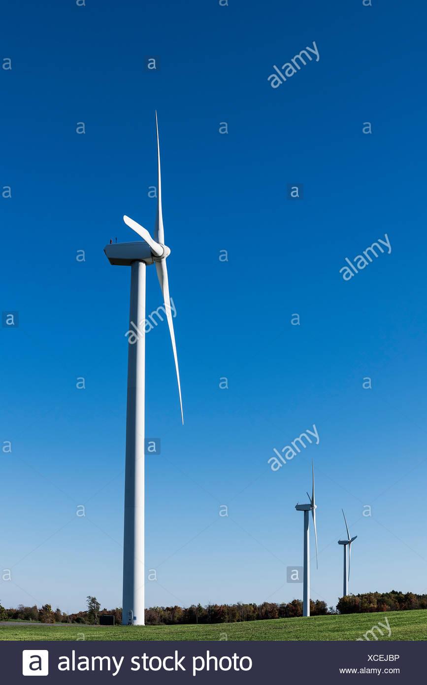 Fattoria eolica, Canastota, New York, Stati Uniti d'America Immagini Stock