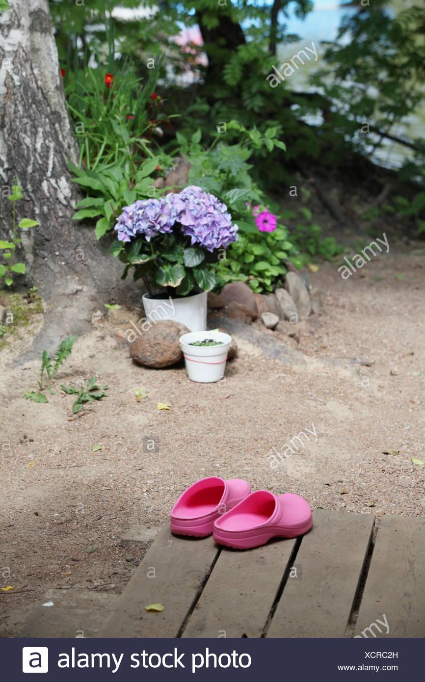 zoccoli rosa Immagini Stock