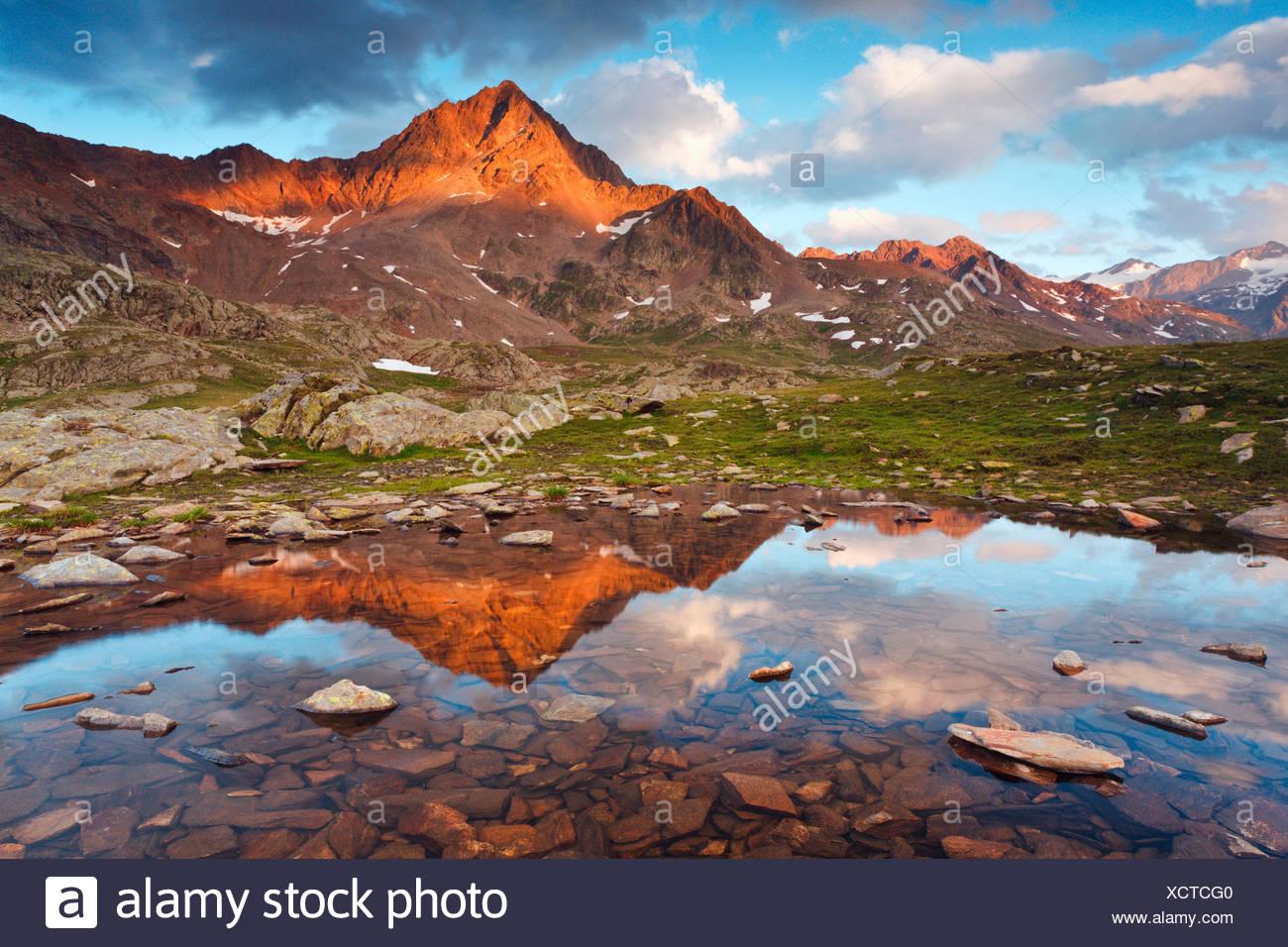 Passo Gavia, provincia di Sondrio, Parco Nazionale dello Stelvio, Lombardia, Italia. Il Corno di Tre Signori si riflette in una piccola pozza. Foto Stock