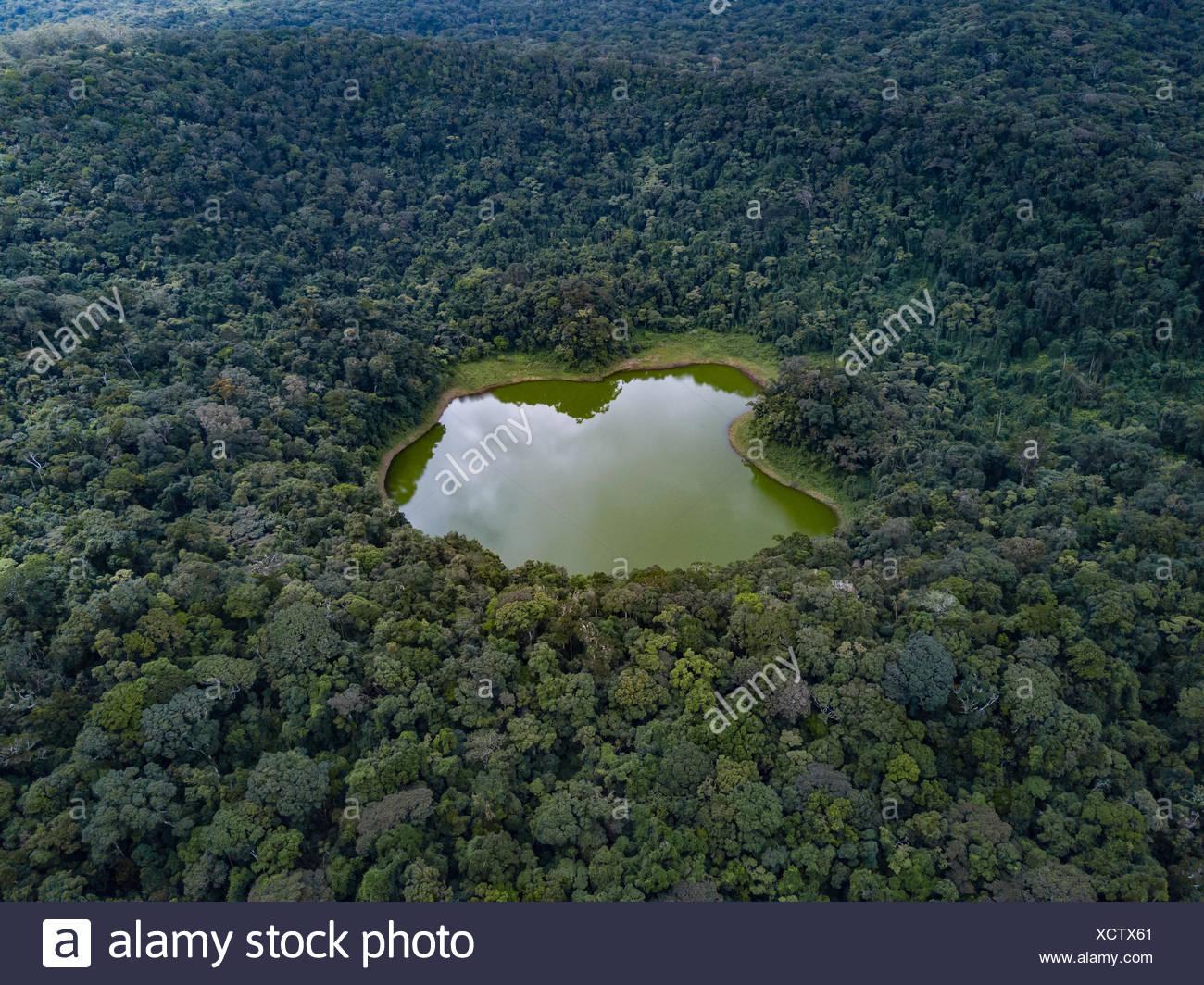Lac Vert nella giungla, parco nazionale montagne d' ambre, nord Madagascar Madagascar Immagini Stock