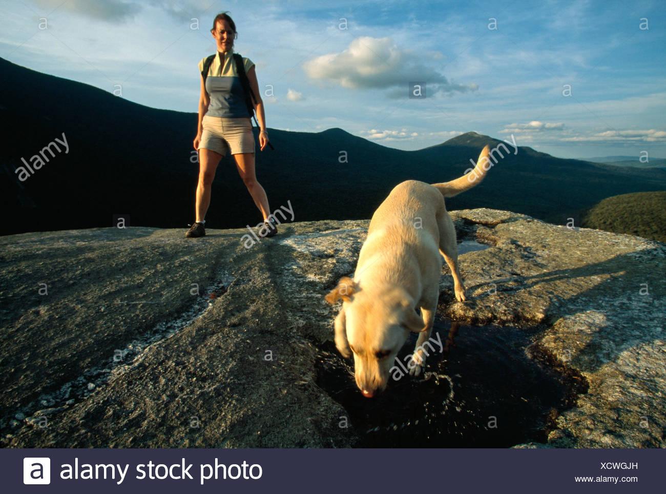 Una donna e un cane in cima a una montagna, Newry, Maine. Immagini Stock