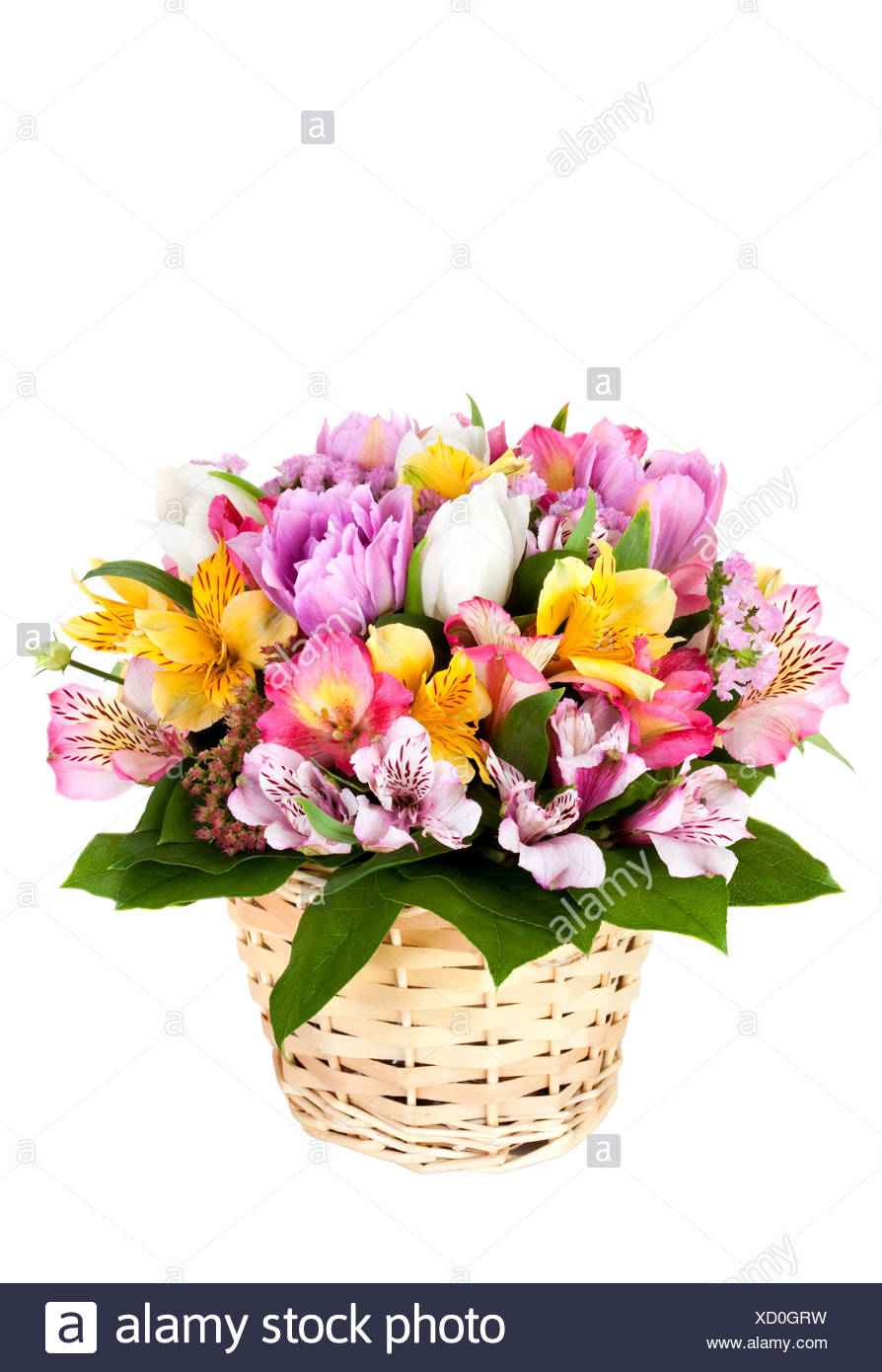Bouquet da diversi colori luminosi Immagini Stock