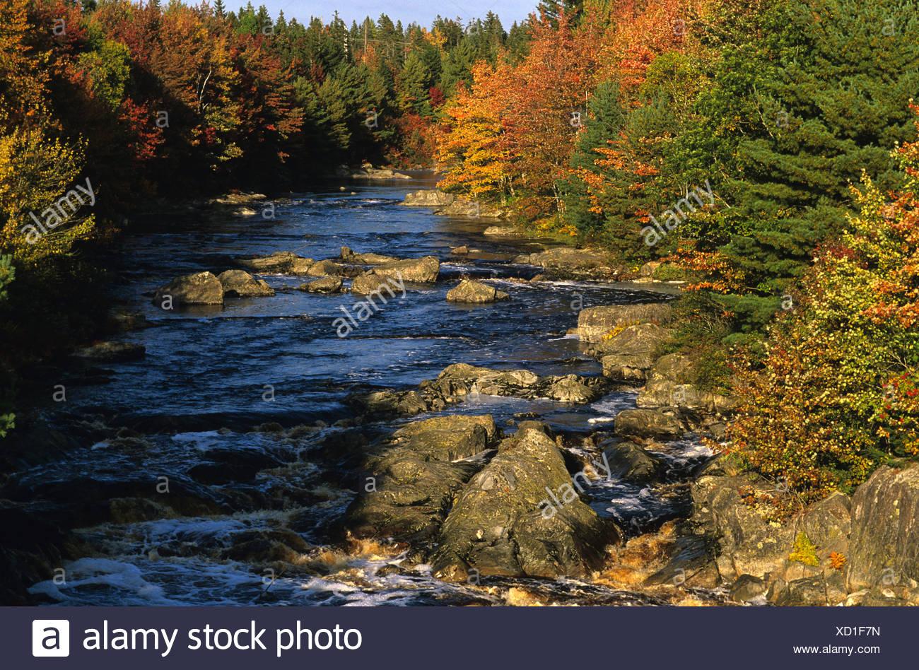 Sable fiume adornata con i colori dell'autunno, Nova Scotia, Canada Immagini Stock