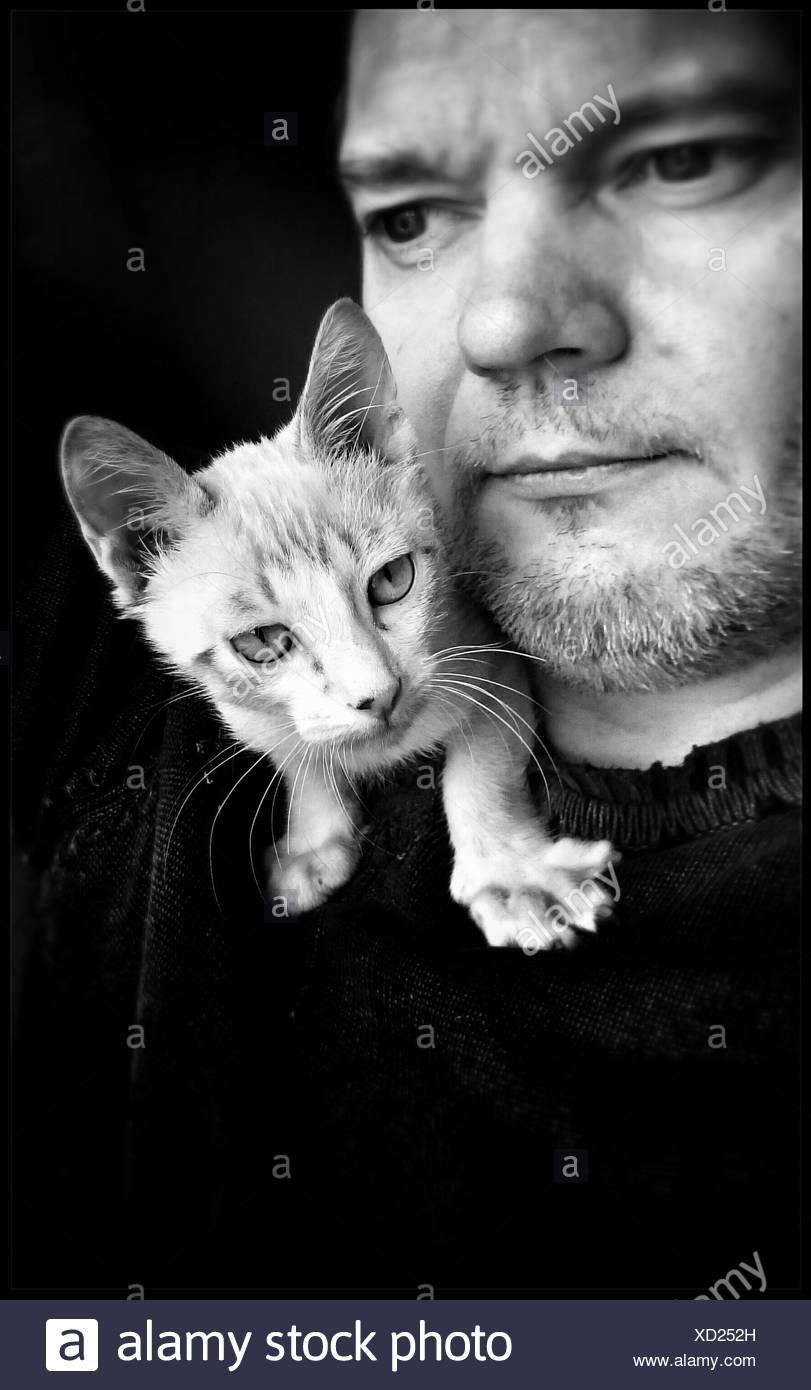 Uomo con gatto bianco sulla sua spalla Immagini Stock