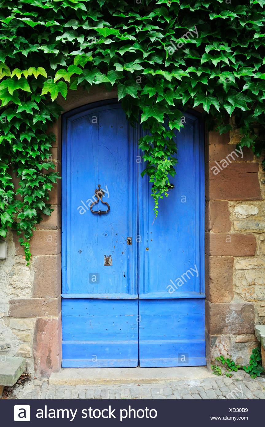 Porta blu con ivy, Cordes-sur-Ciel, Dipartimento del Tarn, Midi-Pirenei, Francia Immagini Stock