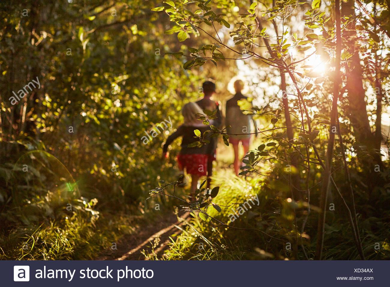 I bambini a piedi da alberi Immagini Stock