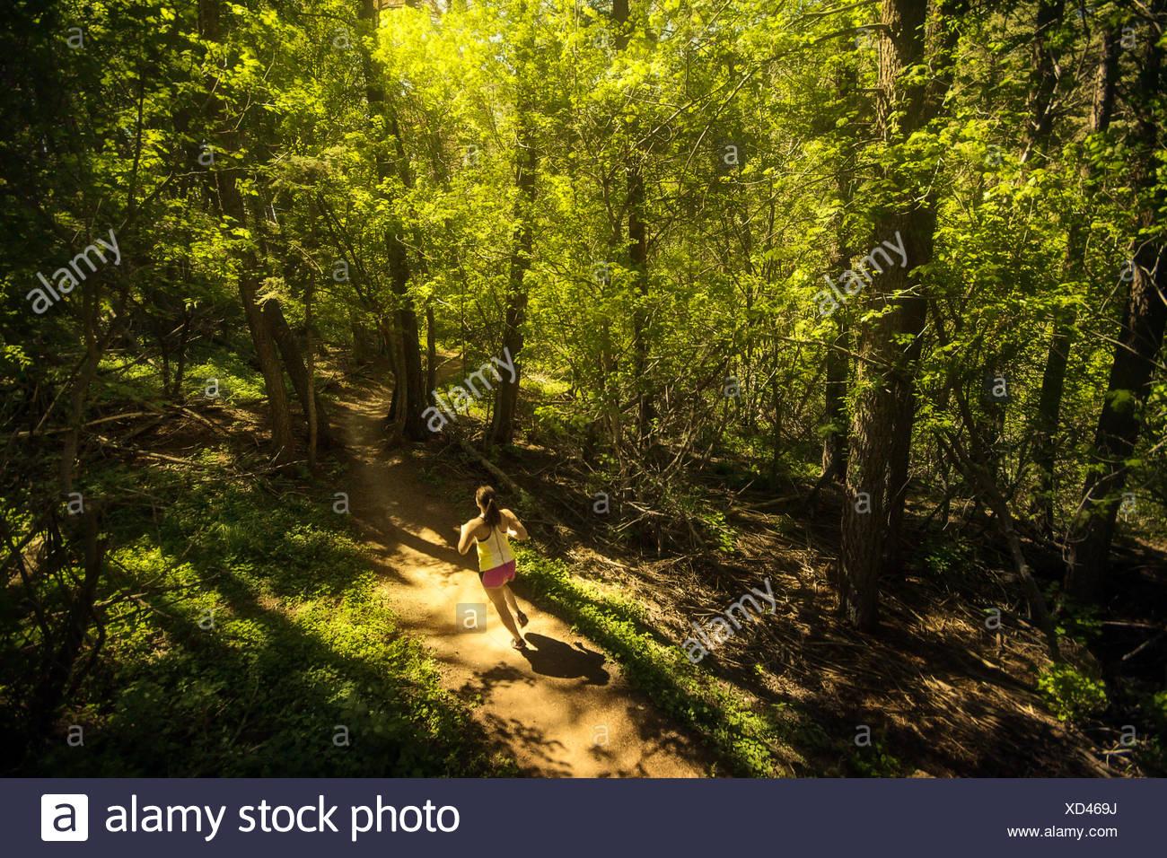 Stati Uniti d'America, Colorado, Golden, Donna corsa su sentiero attraverso la foresta Immagini Stock