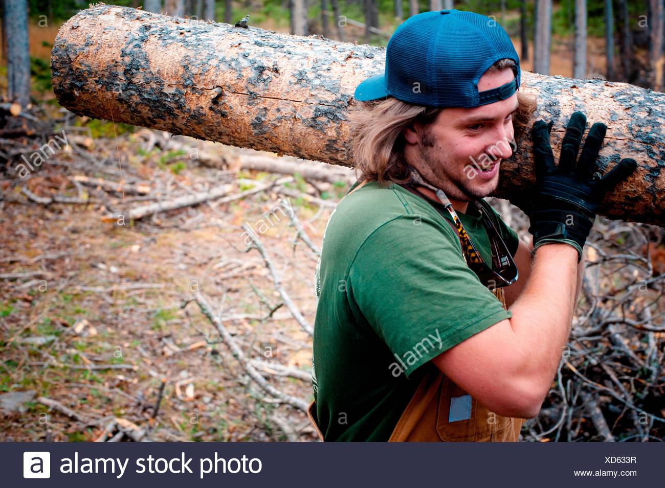 Una Montana uomo porta un registro di grandi dimensioni nei boschi. Immagini Stock