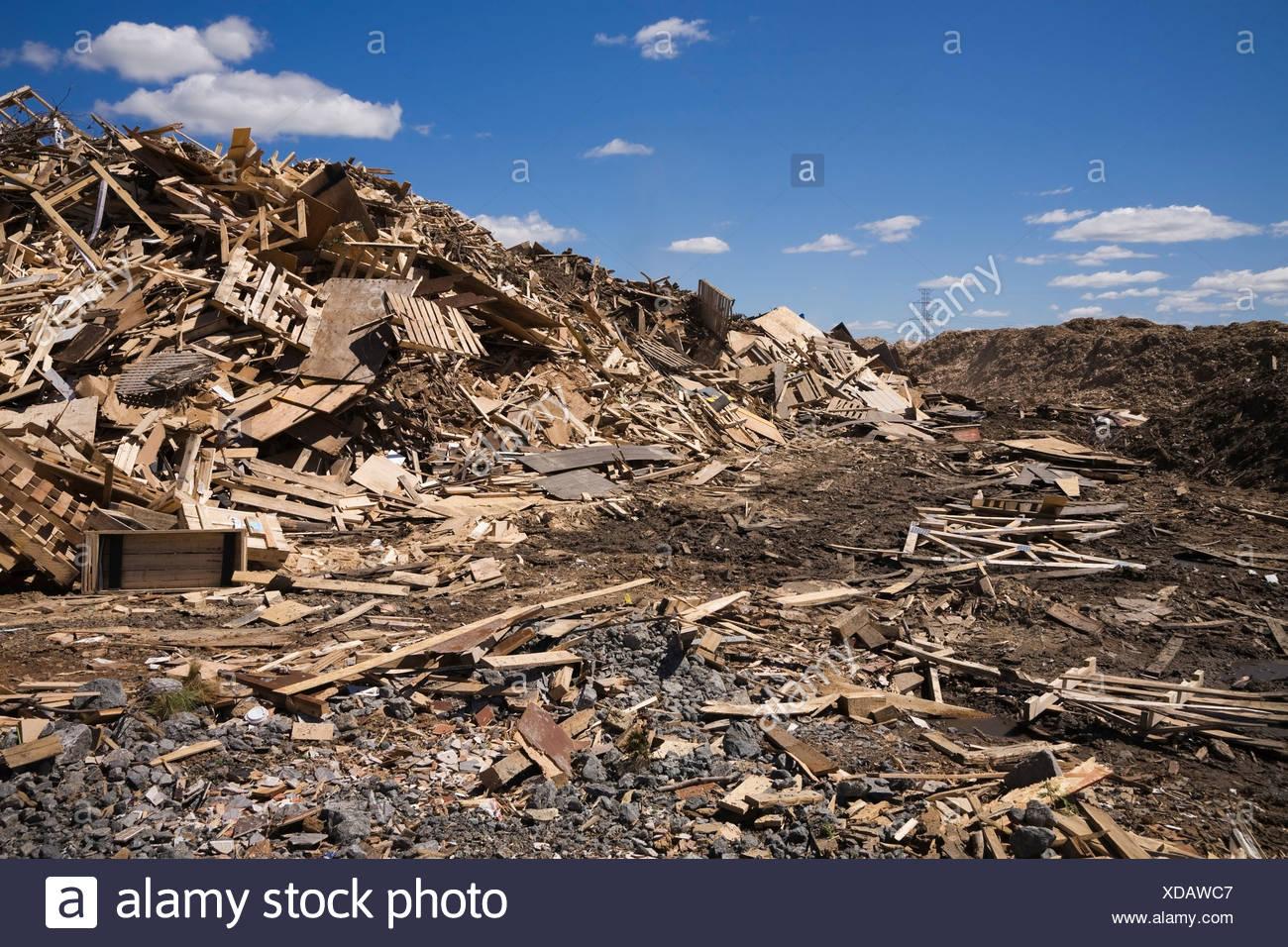 Pila di legno scartato a gestione dei rifiuti sito Immagini Stock