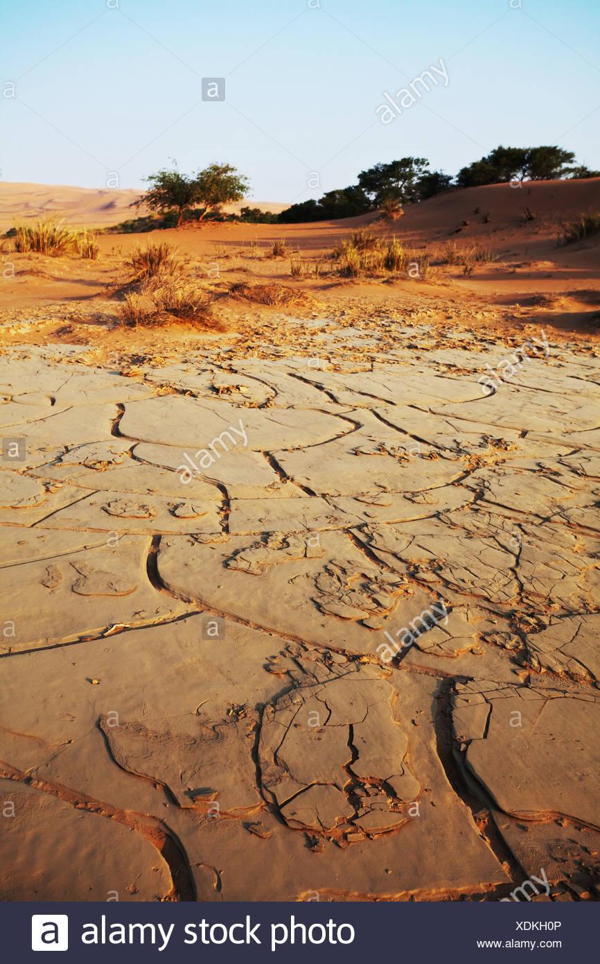 Terra di siccità Immagini Stock