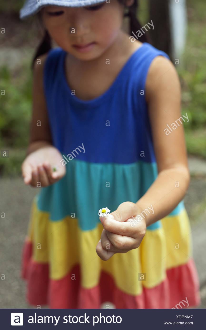 Giovane ragazza che indossa un vestito estivo, tenendo un fiore. Immagini Stock