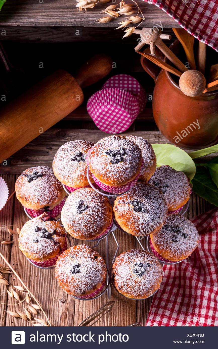 Muffin ai mirtilli Immagini Stock