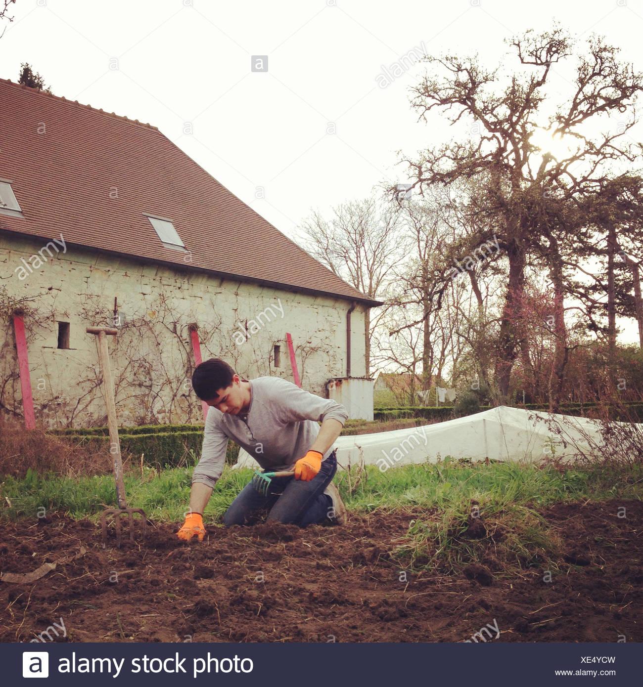 Uomo di giardinaggio Immagini Stock