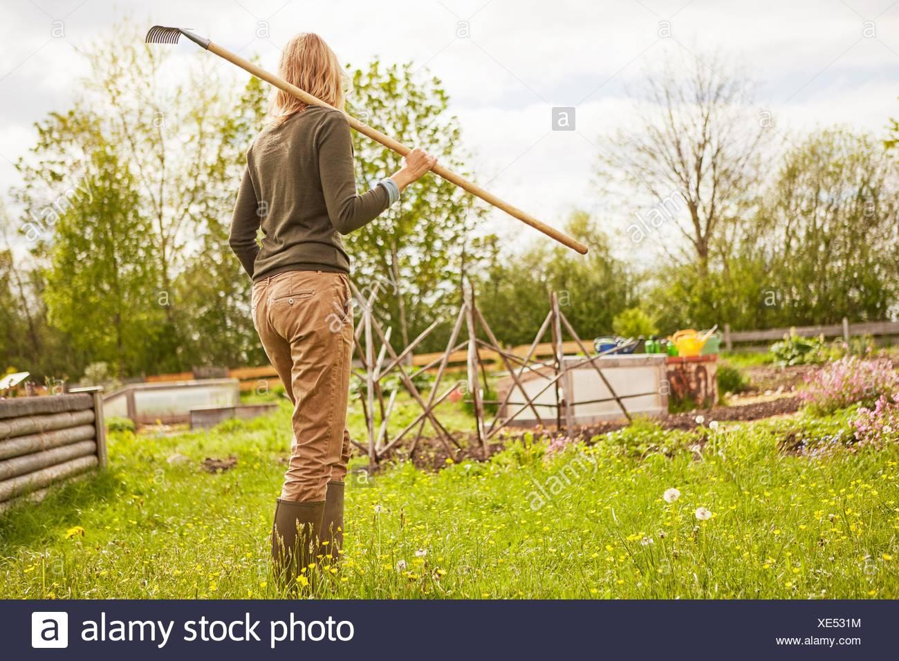 Donna matura, all'aperto, giardinaggio, portando rastrello, vista posteriore Immagini Stock
