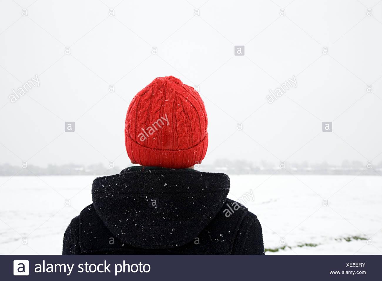 Vista posteriore di un ragazzo nella neve Immagini Stock