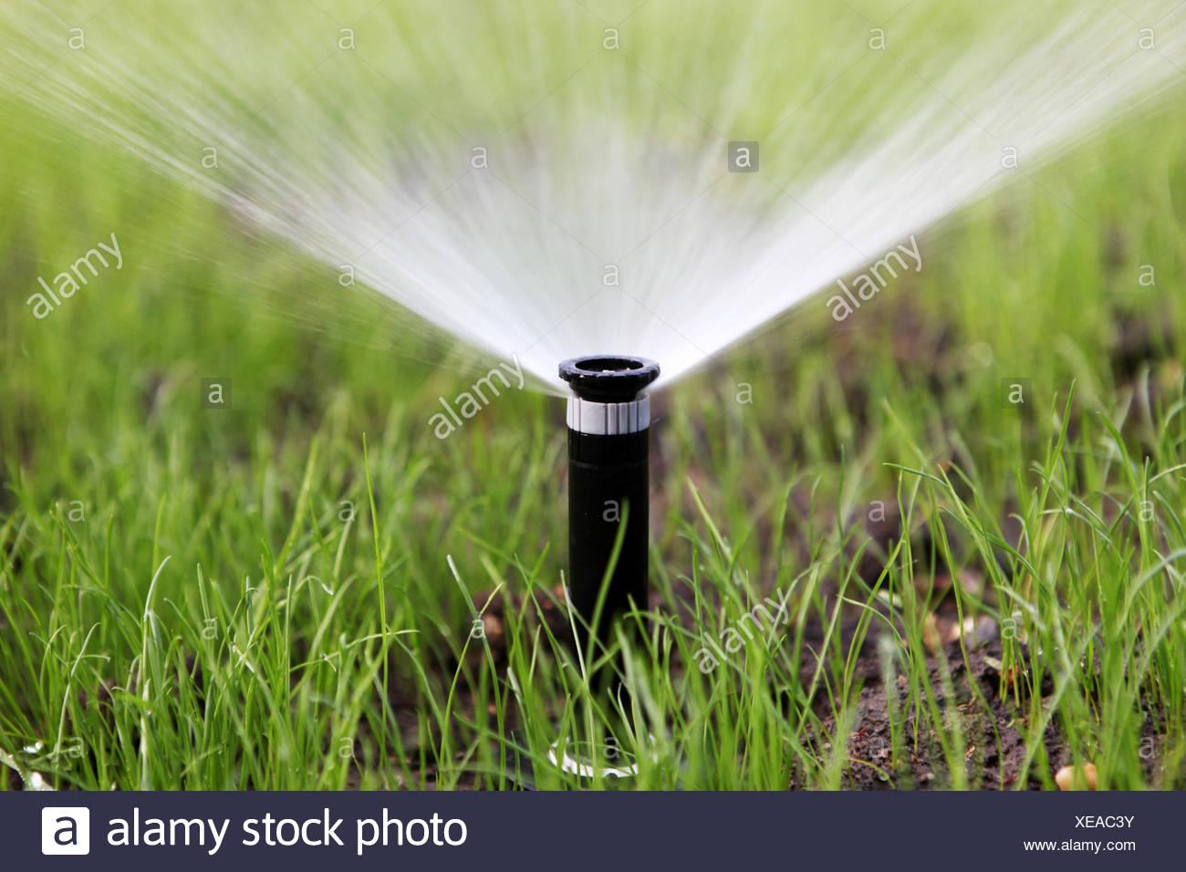 Sprinkler Del Innaffiamento Automatico Immagini Stock