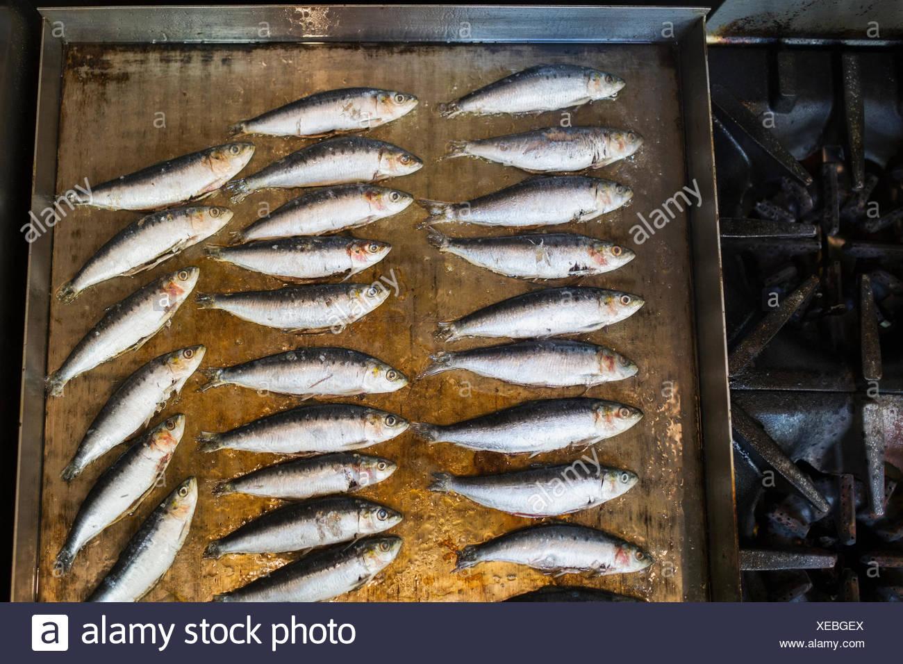 Piccola cucina di pesce sulla sommità piana stufa Immagini Stock