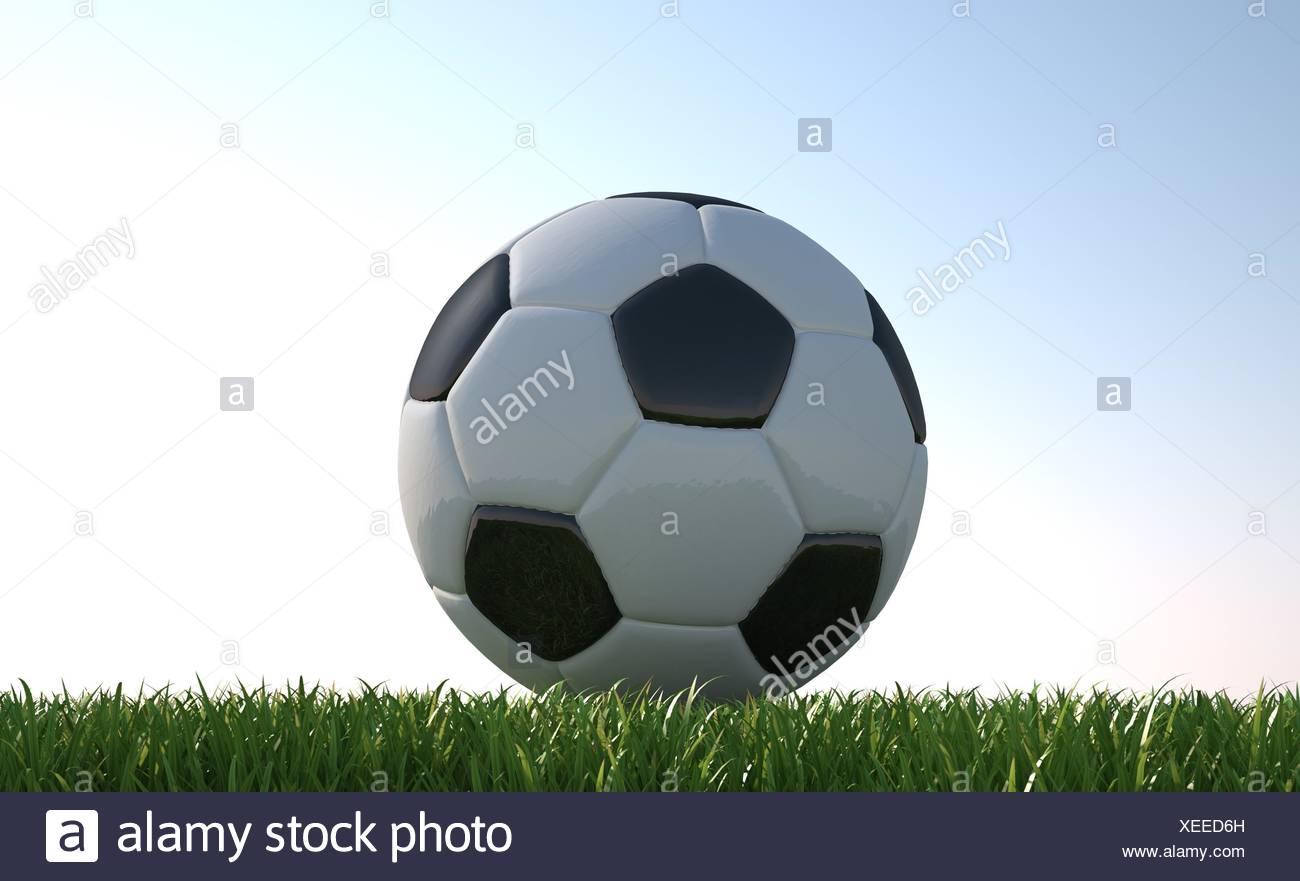 Pallone da calcio vicino sul prato. visto dal livello del suolo