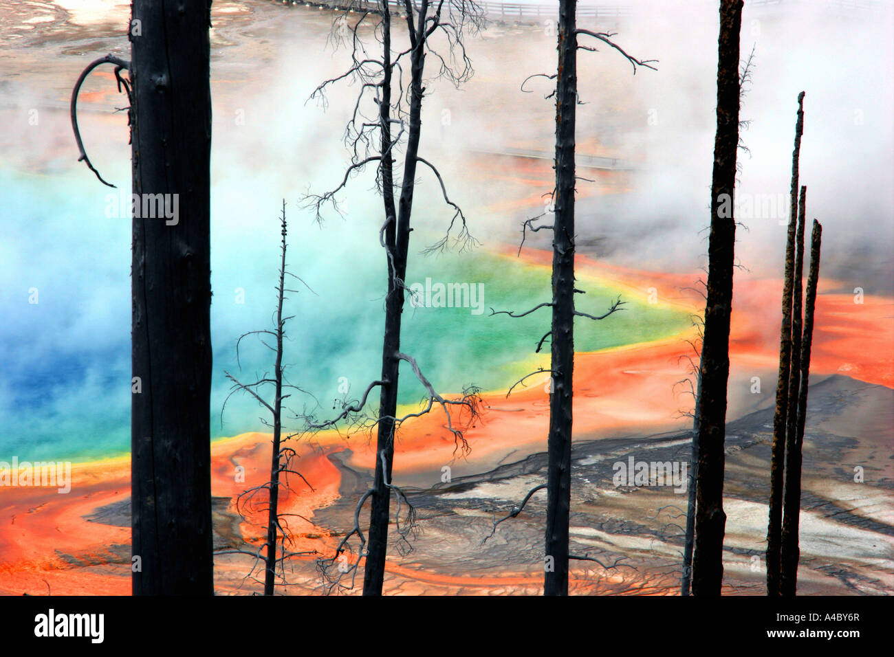 Grand Prismatic Spring, Midway bacia geyser, Parque Nacional Yellowstone, Wyoming Imagens de Stock