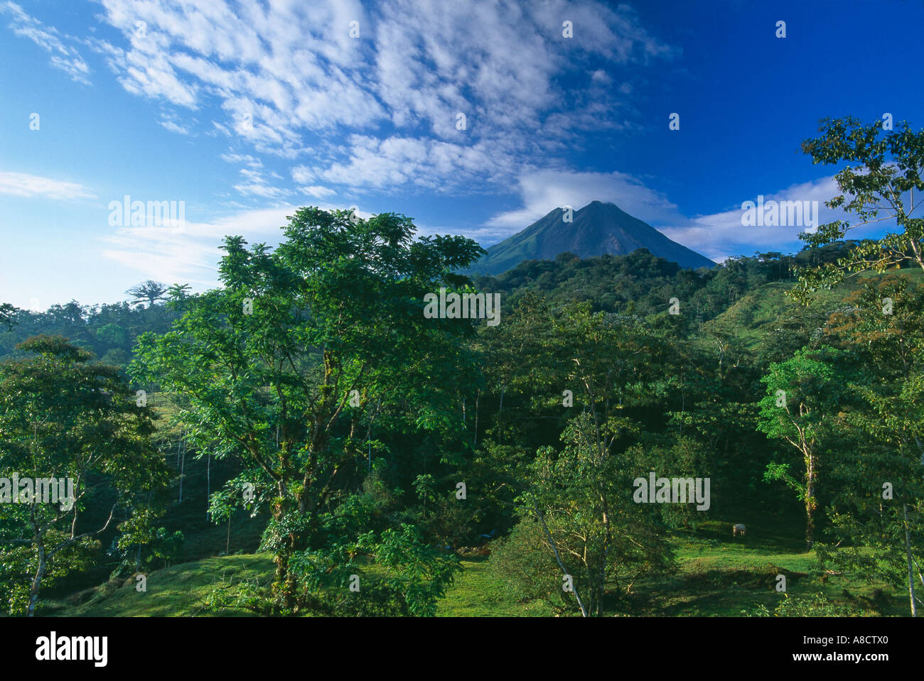 Vulcão Arenal Zona Norte da Costa Rica Imagens de Stock