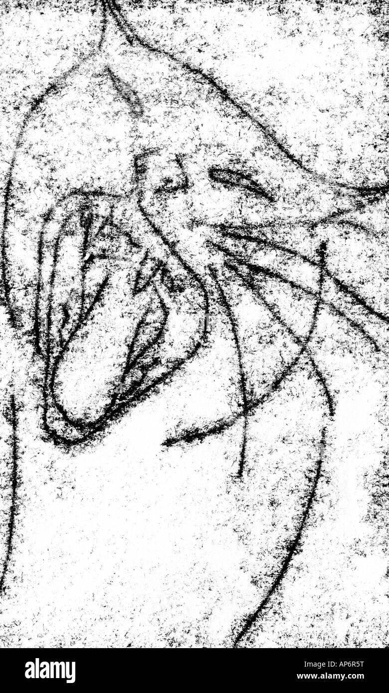 desenho de tigre dentes cat boca língua gritar comer diversão