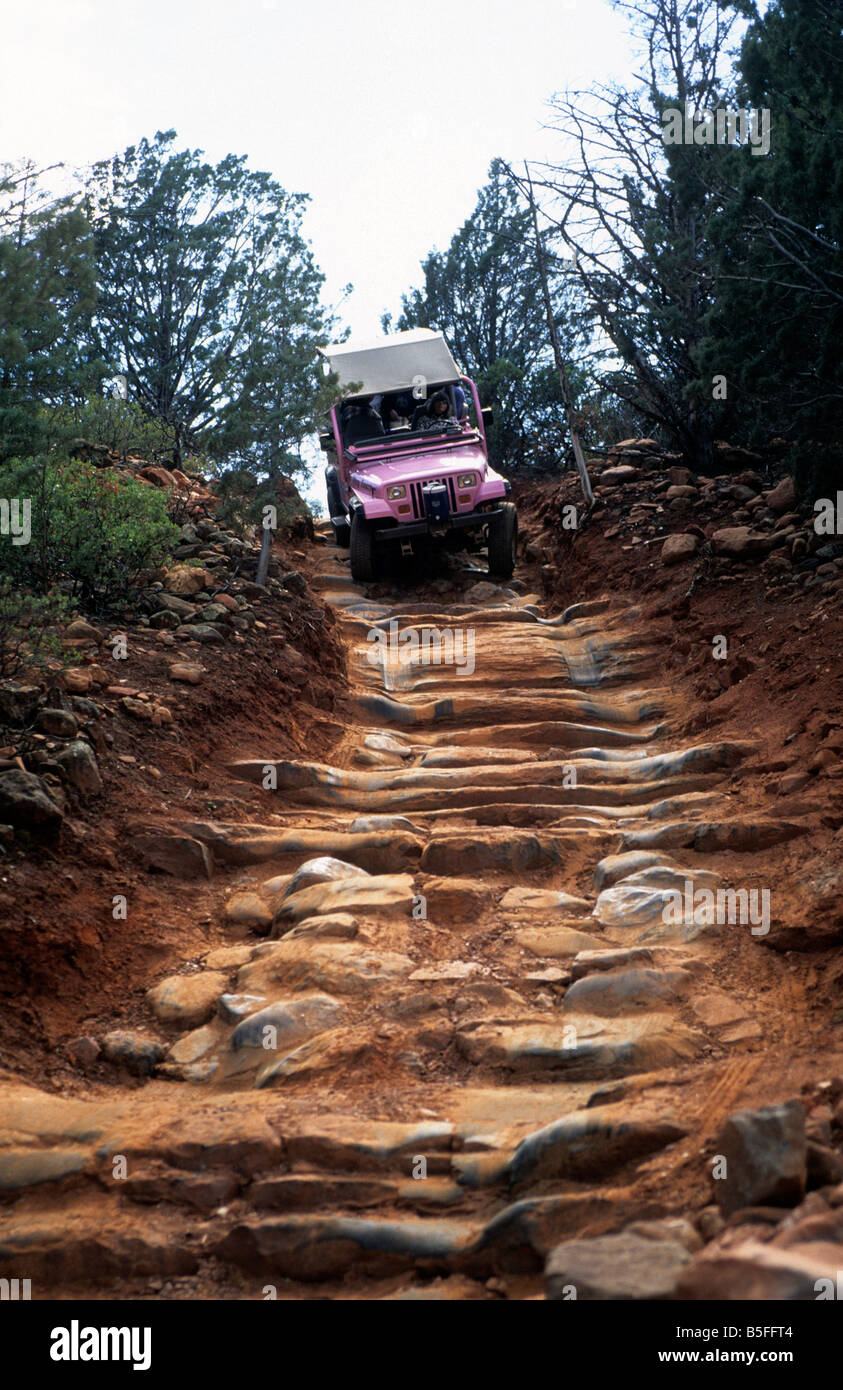 Eua Arizona Sedona Uma Rosa Jeep Tour Na Trilha De Broken Arrow