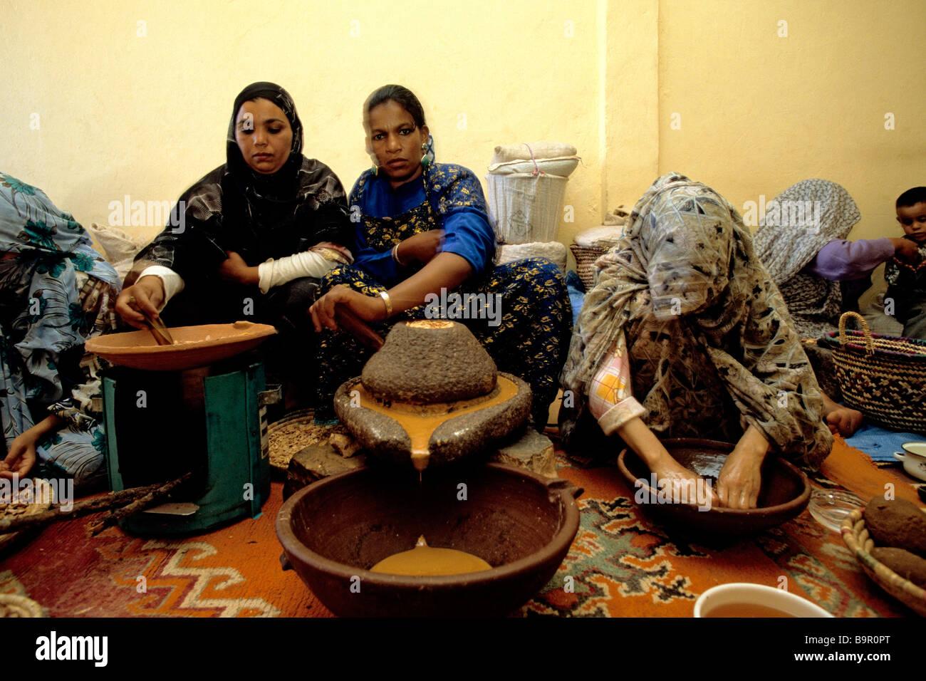 Marrocos, Grande Atlas, a fabricação do óleo de argão pelos berber mulheres Imagens de Stock