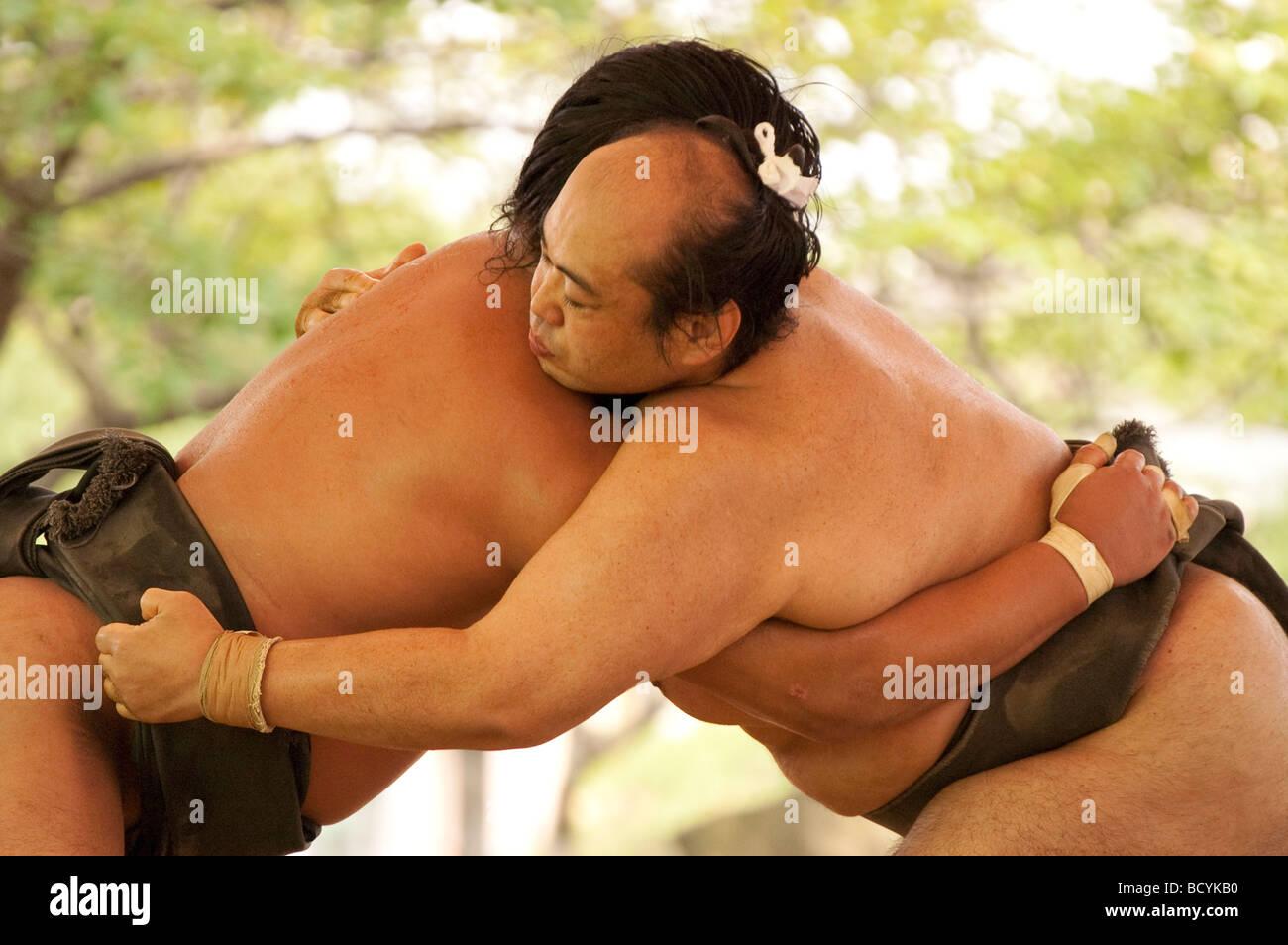 Os lutadores de sumo da Minezaki Heya durante sua formação de manhã cedo, Kyuka Koen (nove Flores Imagens de Stock