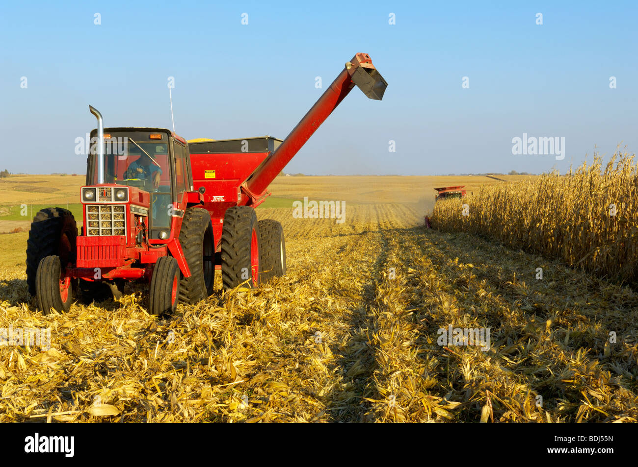 Agriculture - A tractor with a full grain cart pulls away from a
